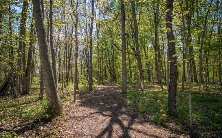 Peace and Quiet in Nature at Shagbark Park :: I've Been Bit! Travel Blog