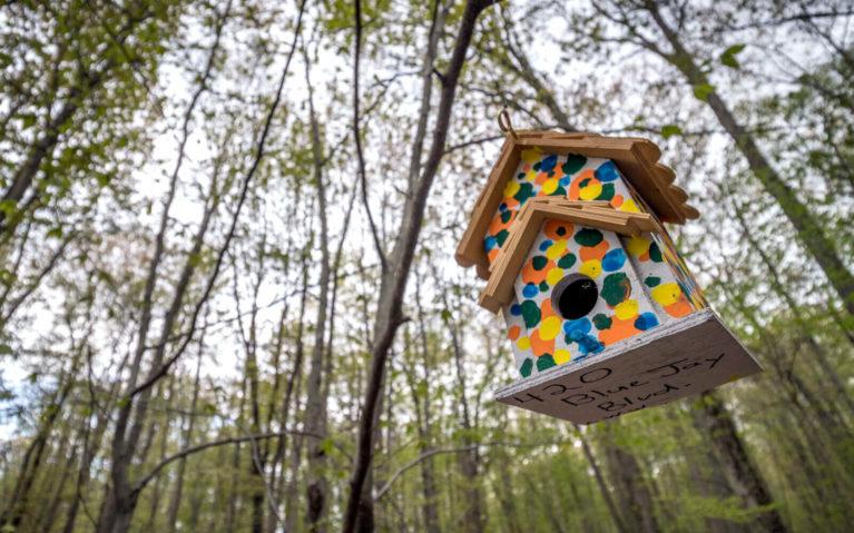 Polka Dot Birdhouse In the Trees :: I've Been Bit! Travel Blog