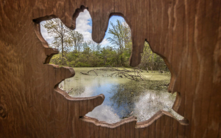 Close Up of the Heartland Forest Turtle Pond Through Leaf Viewfinder :: I've Been Bit! Travel Blog