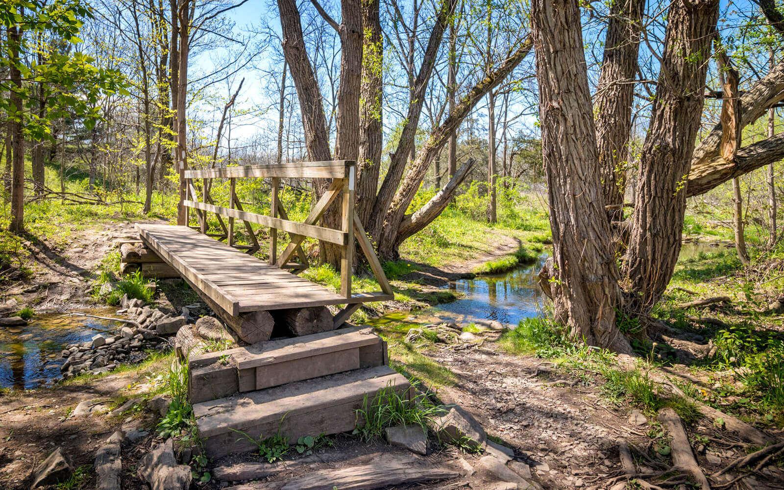 One of the Bridges in Short Hills Provincial Park :: I've Been Bit! Travel Blog