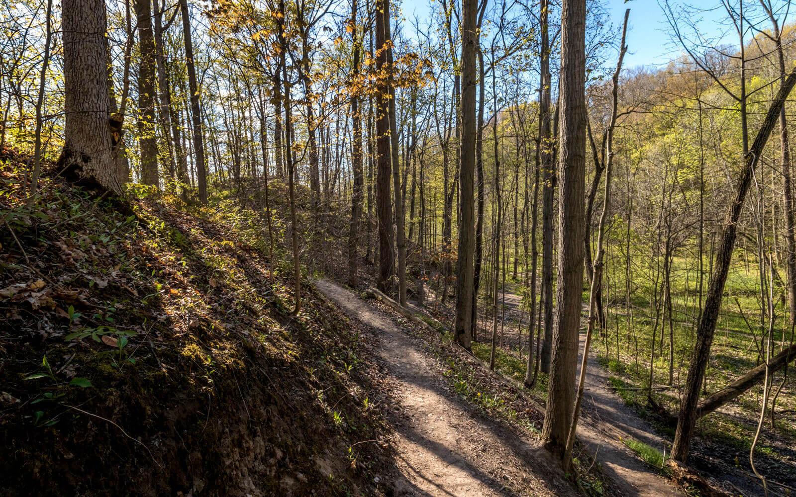 Short Hills Provincial Park Hiking Trails :: I've Been Bit! Travel Blog
