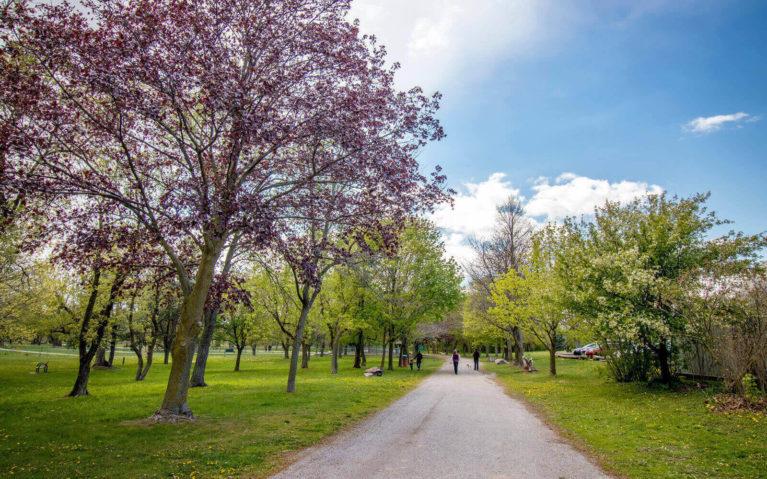 Firemen's Park in Niagara Falls :: I've Been Bit! Travel Blog