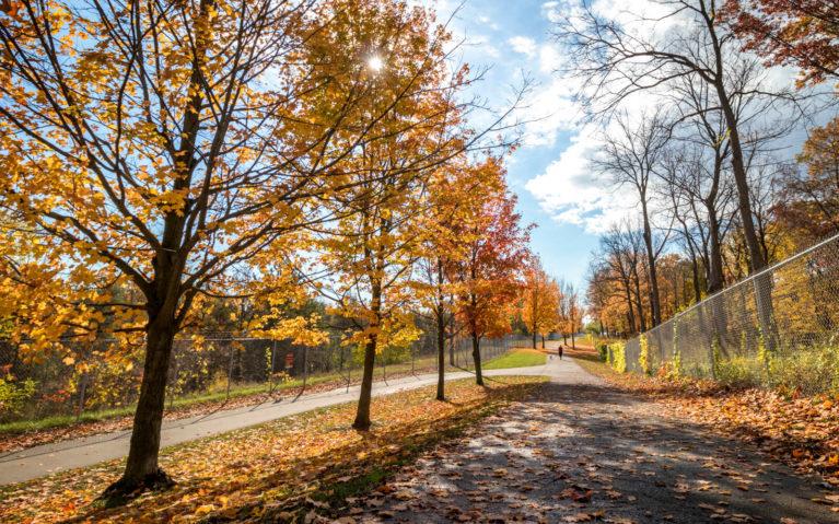 Niagara Falls Millennium Trail :: I've Been Bit! Travel Blog
