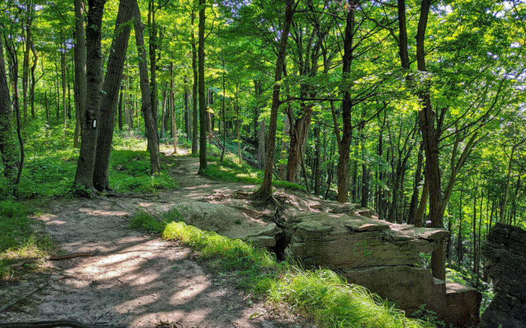 Views of the Escarpment in the Woodend Conservation Area :: I've Been Bit! Travel Blog