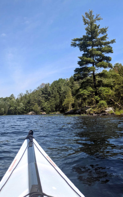 Some of the Views from the Water on Silent Lake :: I've Been Bit! Travel Blog