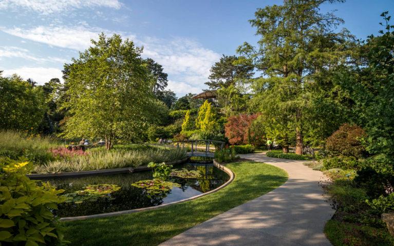 Golden Hour at RBG's Rock Garden :: I've Been Bit! Travel Blog