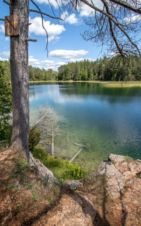 McGinnis Lake, The Meromictic Lake at Petroglyphs Provincial Park :: I've Been Bit! Travel Blog