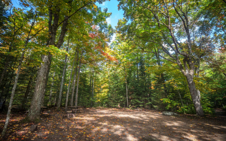 One of the Hardwoods Campground Sites :: I've Been Bit! Travel Blog