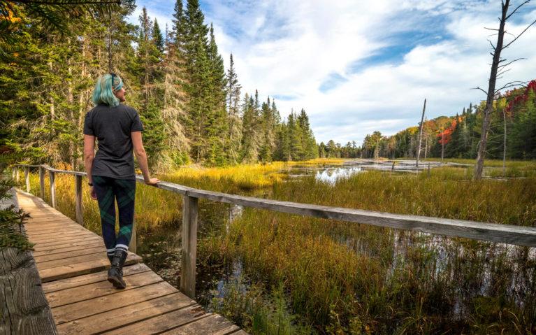 Lindsay Enjoying the Fall Colours Along the Beaver Meadows Trail :: I've Been Bit! Travel Blog